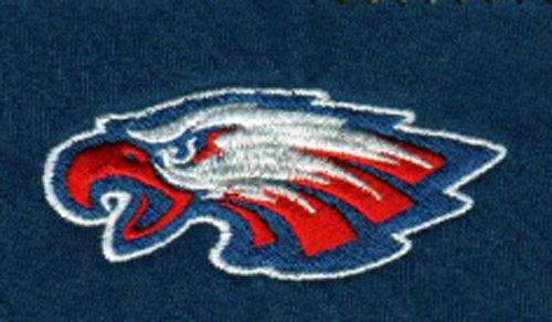 pequot-lakes-patriots-eagle embroidery file.